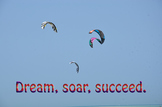 Photo Poster Dream Soar Succeed Inspirational Quote