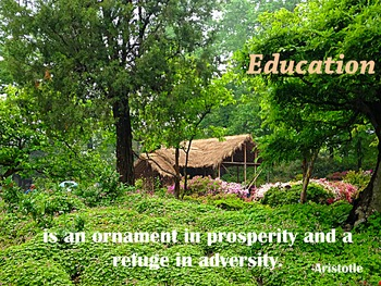Photo Poster Education is an ornament Inspirational Quote