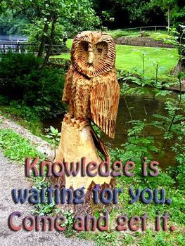 Photo Poster Knowledge is waiting for you Inspirational Quote