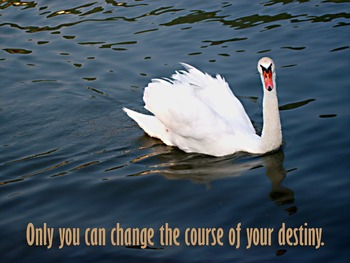 Photo Poster Only you can change the course.... Inspirational Quote