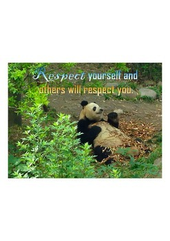 Photo Poster Respect Yourself Inspirational Quote