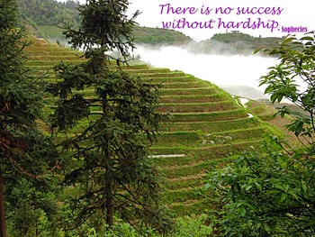 Photo Poster There is no success without hardship Inspirational Quote