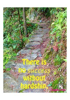 Photo Poster There is no success without hardship Inspirat