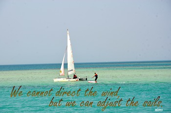 Photo Poster We cannot direct the wind... Inspirational Quote