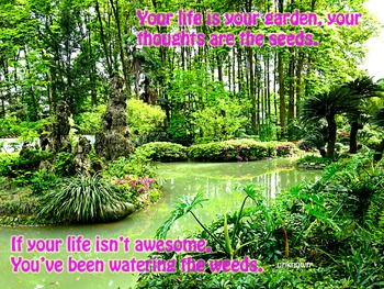 Photo Poster Your life is your garden /Inspirational Quote