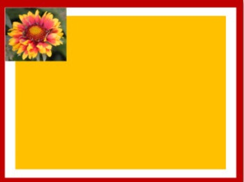 Photo Products - Mary's Garden Coreopsis Theme