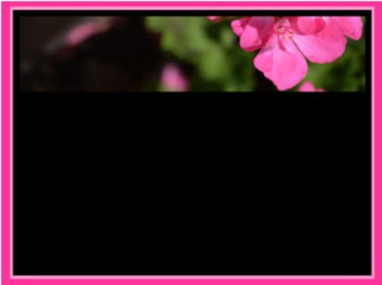 Photo Products - Mary's Garden Pink Geraniums on Black Theme