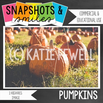 Photo: Pumpkins: 1 high res image