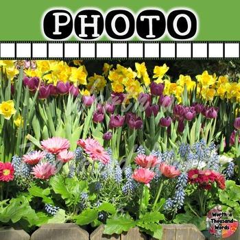 Photo: Spring Flowers