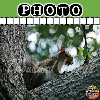 Photo: Squirrel in Tree
