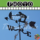 Photo: Weather Vane