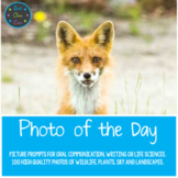 Photo of the Day - Google Slides *Daily photo prompts for