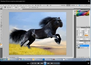 PhotoShop CS5 How to Morph two Animals together Video Directions