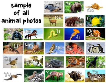 Photo Alphabet Posters SUPER Bundle