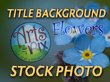 Photograph - Forget Me Not - Title Background - stock phot
