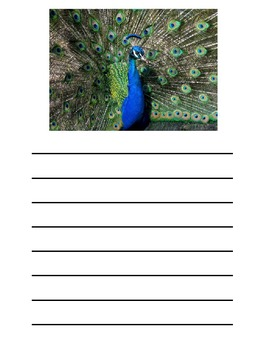 Photograph Prompts for Writing 2