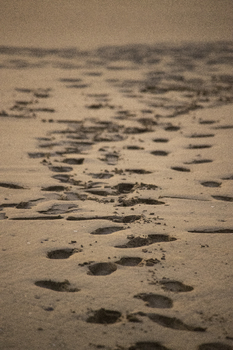 Photograph of footprints in the sand on a beach