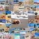 Photos Photographs BEACHES, clip art