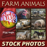 "Stock Photos - ""Farm Animals"" - photo pack BUNDLE - animal"