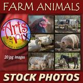 "Stock Photos - ""Farm Animals"" - photo pack BUNDLE - animal"