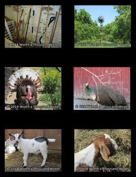 Farm Photos - Set 2 (BUNDLE)
