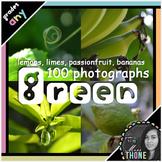 Photographs: Green Lemons, Limes, Bananas & Passionfruit + Bugs!