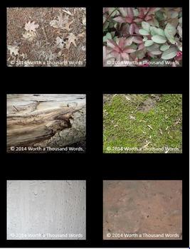Nature Photos - Set 1 (BUNDLE)