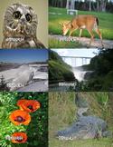 Photographs: Sampler