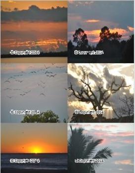 Photographs: Sunshots
