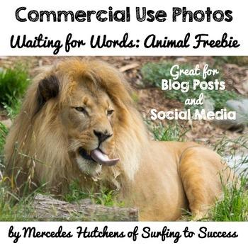 Photographs: Waiting for Words Animal Freebie