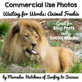 Photographs: Waiting for Words Animal Freebie