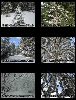 Winter Photos (Bundle)