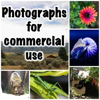 Photographs (animals and more) for commercial use