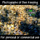 Photographs of Bee Keeping
