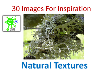 Photographs of Natural Textures for Inspiration