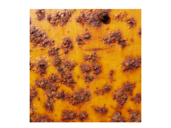 Photographs of Rust / Corrosion for Inspiration