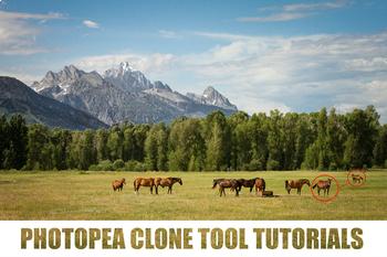 Photopea (Photoshop Alternative) - 3 Clone Tool Video Tutorials