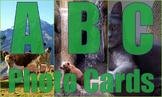 Photos : ABC Alphabet Picture Cards