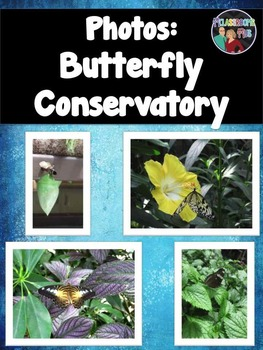 Photos: Butterfly Conservatory