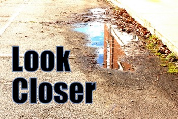 Photos : Look Closer - pictures to examine and decipher -