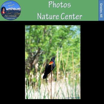Photos - Nature Center