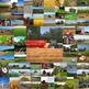 Photos FARMING