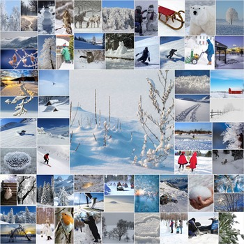 Photos Photographs Photo Winter 62 real images, clip art