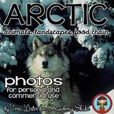 Photos Photographs ARCTIC - animals plants landscapes adaptations food chain
