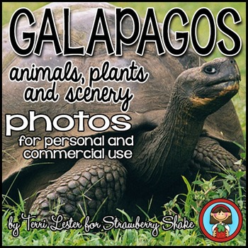 Photos Photographs GALAPAGOS animals plants scenery See wh