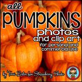 Photos Photographs PUMPKINS Clip Art with LIFE CYCLE