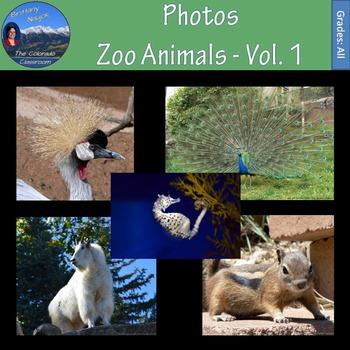 Photos - Zoo Animals Volume 1