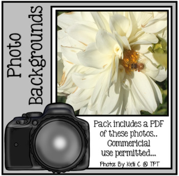 Photos of Dahlia's for Backgrounds ~ Good for Commercial or Personal Use