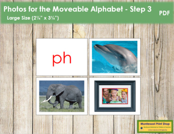 Photos for Moveable Alphabet - Step 3 (Large)