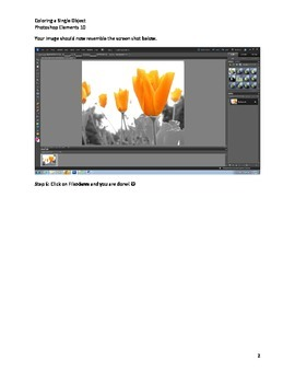 Photoshop Elements Intro Unit Lesson 6: Coloring a Single Object